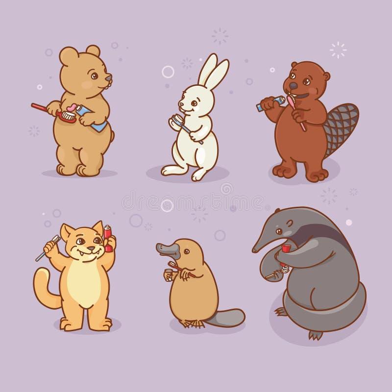 el Hormiga-comedor, los ornitorrincos, las liebres, el castor, el gato y el oso están cepillando sus dientes y pico ilustración del vector