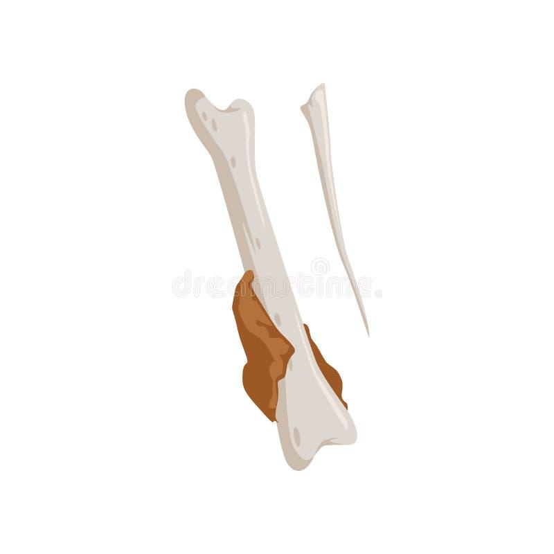El hueso comido del palillo de pollo, reciclando concepto de la basura, utiliza el ejemplo inútil del vector en un fondo blanco ilustración del vector