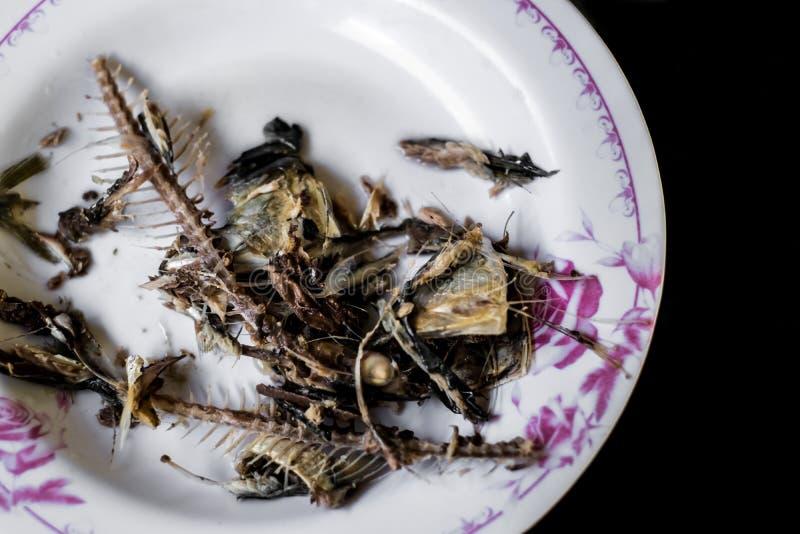 El hueso de la caballa de Fried Fish es tira en la placa blanca con la flor rosada modelada en fondo negro fotos de archivo