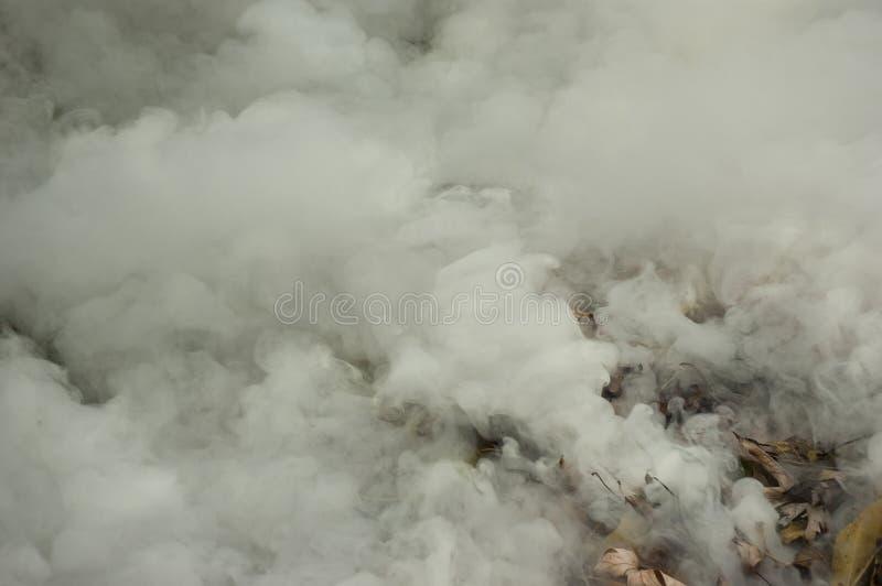 El humo grueso se lanza de una pila de hojas fotografía de archivo libre de regalías