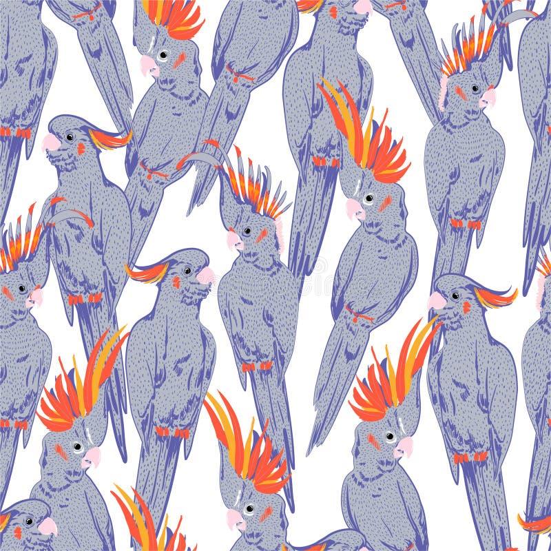 El humor y lindos dulces de la línea de mano pájaros púrpuras en colores pastel de la cacatúa del bosquejo garabatean el modelo i libre illustration