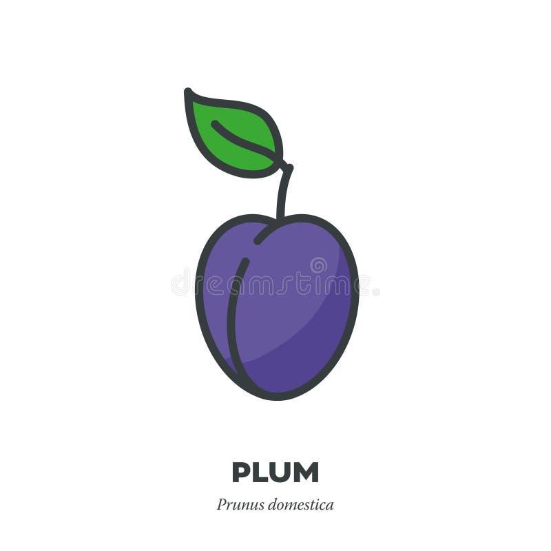 El icono de la fruta del ciruelo, llenó vector del estilo del esquema libre illustration