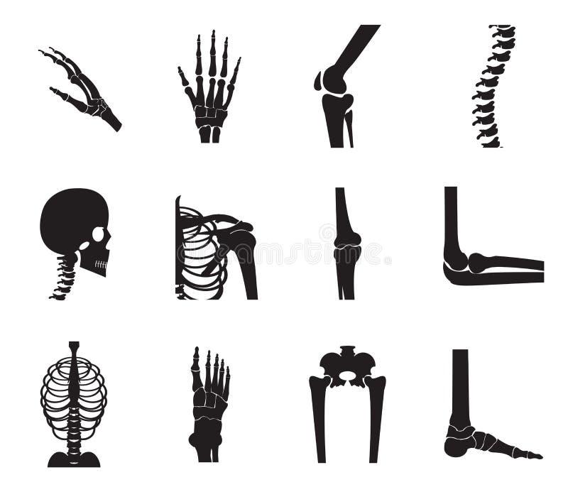 El icono ortopédico y de la espina dorsal fijó en el fondo blanco stock de ilustración
