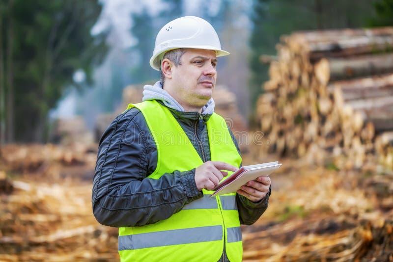 El ingeniero del bosque con la tableta cerca de pilas de abre una sesión el bosque fotografía de archivo libre de regalías
