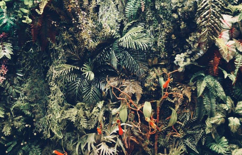 El interior moderno de la pared de un jardín llenó muchas plantas de la lámpara de la decoración del techo imagen de archivo