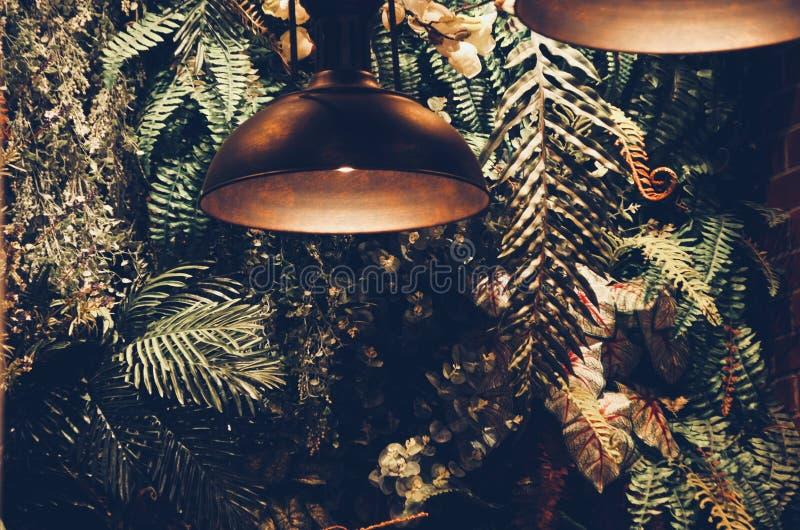 El interior moderno de la pared de un jardín llenó muchas plantas de la lámpara de la decoración del techo fotografía de archivo