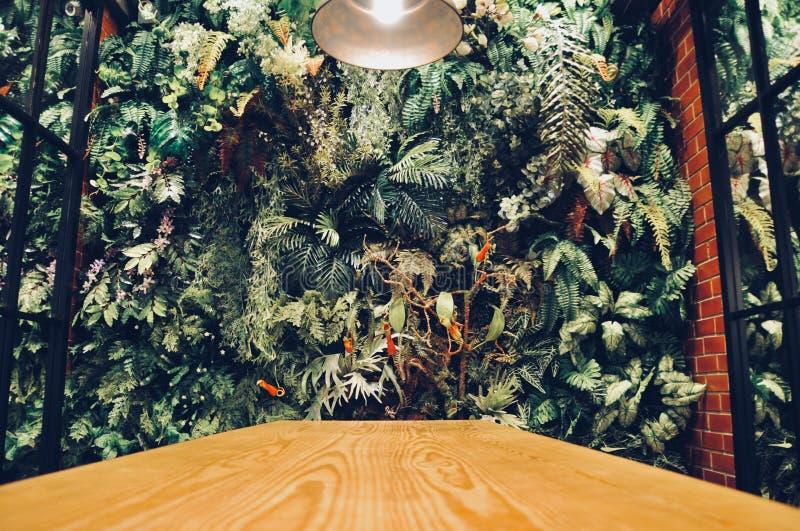El interior moderno de la pared de un jardín llenó muchas plantas tropicales foto de archivo libre de regalías