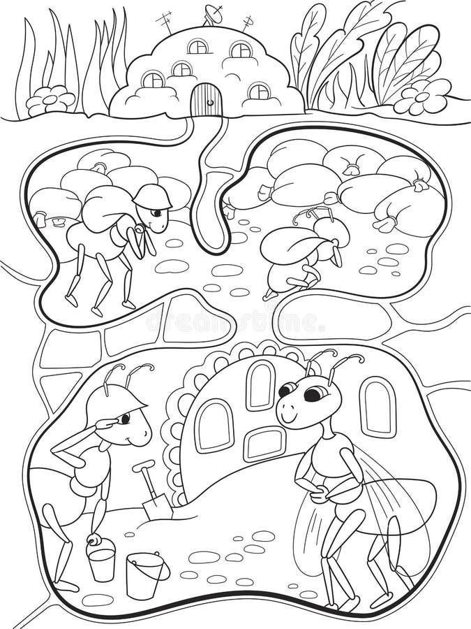El Interior Y La Vida Familiar De Hormigas En Un Colorante Del ...
