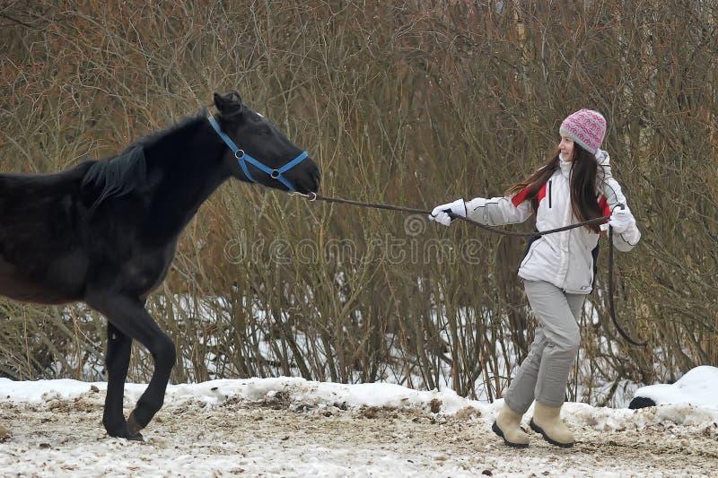 El invierno camina con el caballo fotos de archivo