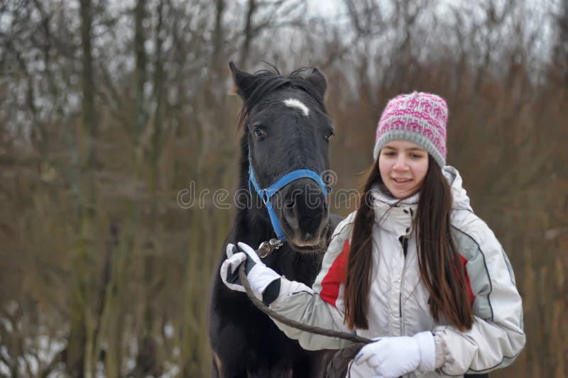 El invierno camina con el caballo fotografía de archivo