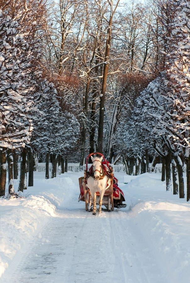 El invierno día de fiesta-recorre en carro imagen de archivo