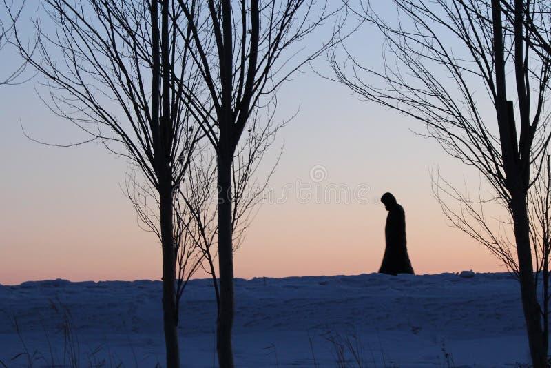 El invierno de la sombra imagenes de archivo