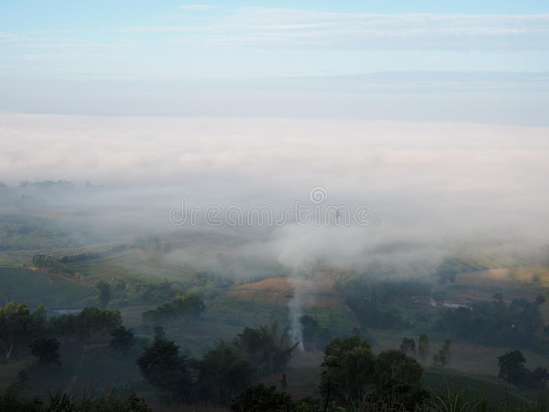 El invierno deja el sol de la niebla imágenes de archivo libres de regalías