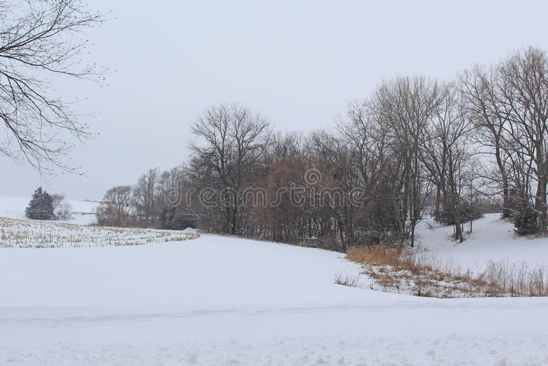 El invierno empaña tierras de labrantío en el sudoeste Iowa imágenes de archivo libres de regalías