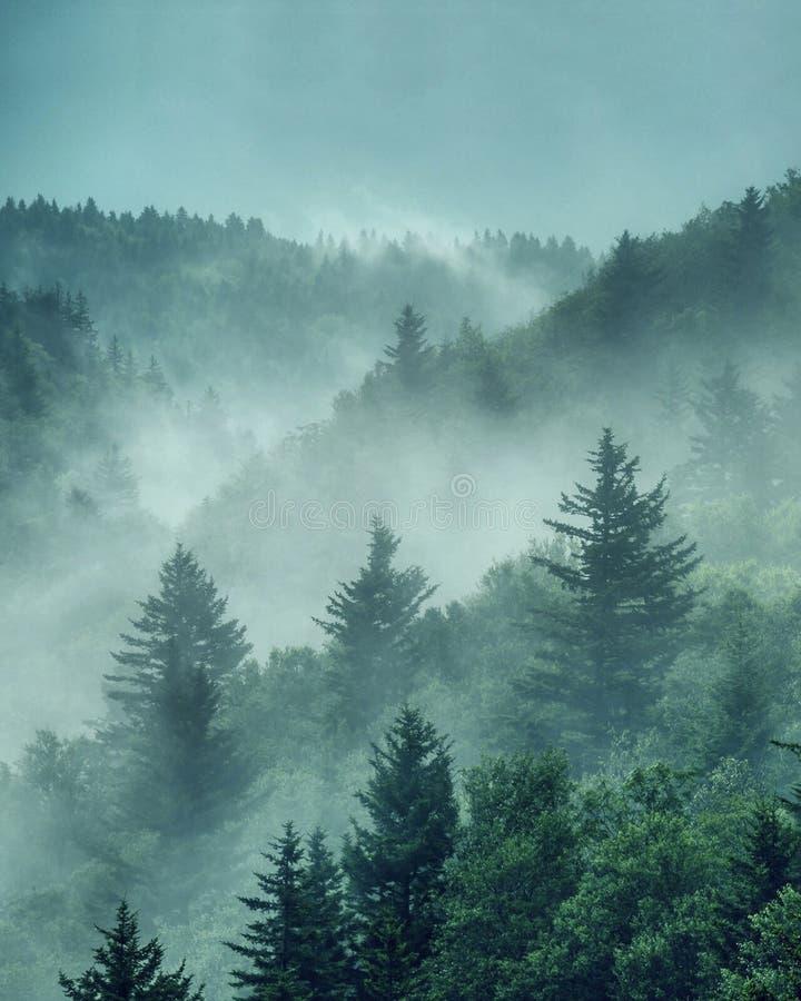 El invierno está en el aire imagen de archivo libre de regalías