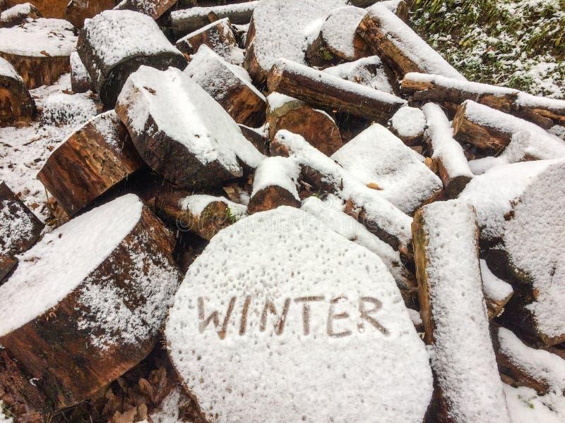 El invierno está viniendo con escritura imágenes de archivo libres de regalías