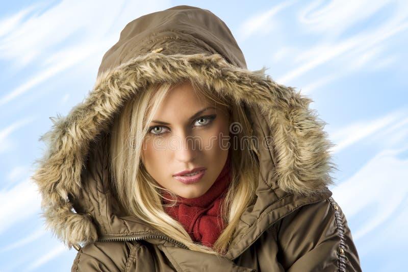 El invierno frío fotos de archivo