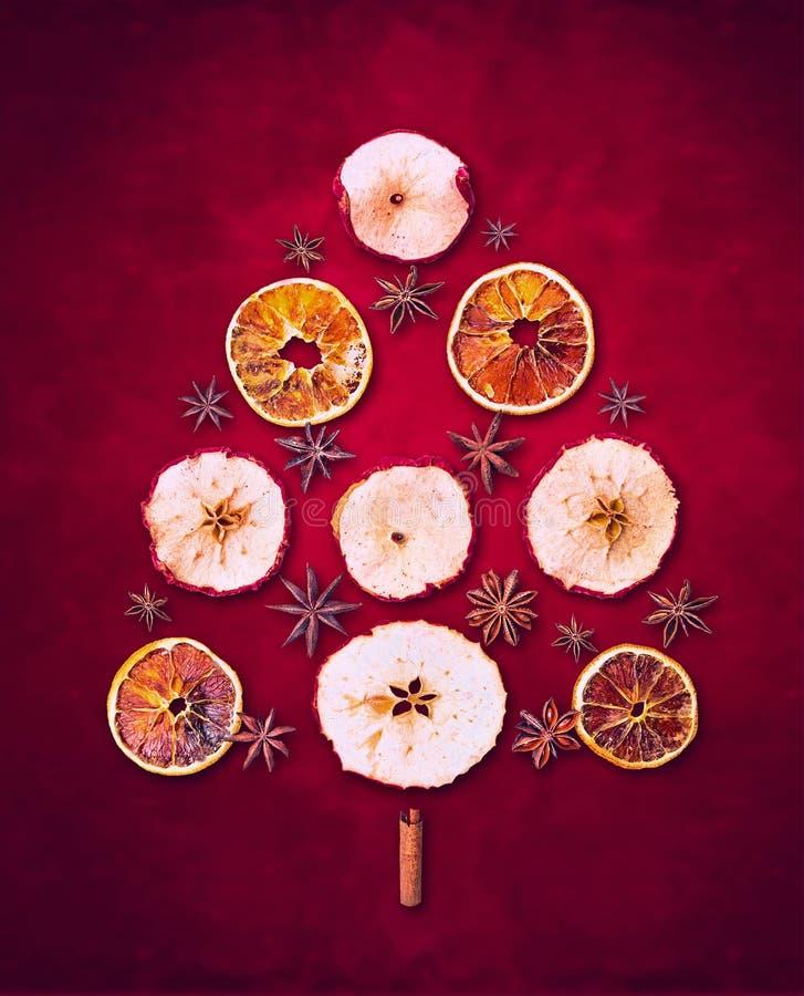El invierno seco da fruto árbol de navidad en fondo rojo imagen de archivo libre de regalías