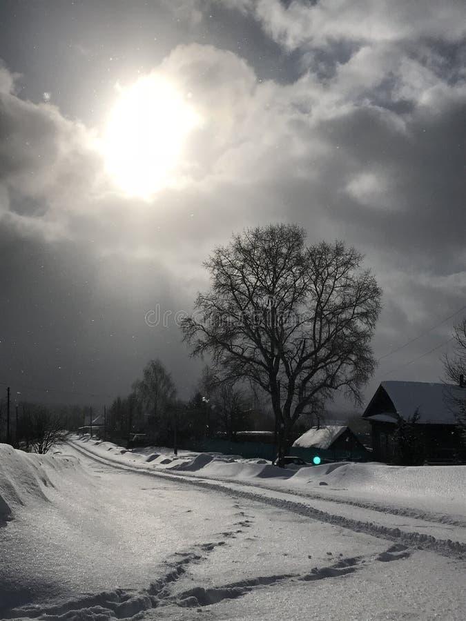 El invierno vinieron y las ramas del zaprosili fotografía de archivo