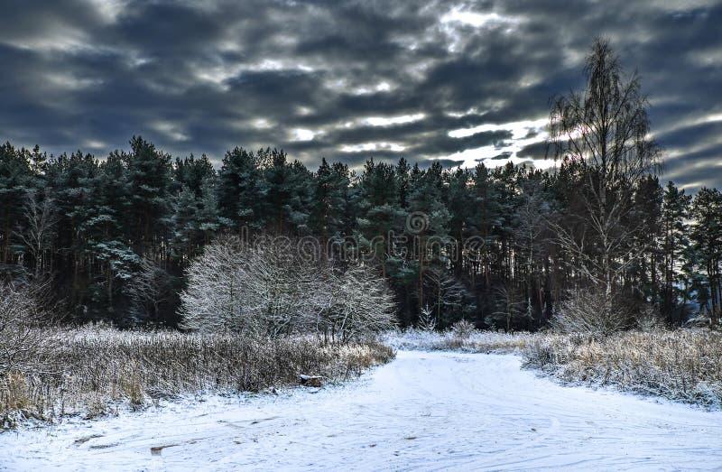 El invierno vino fotos de archivo libres de regalías