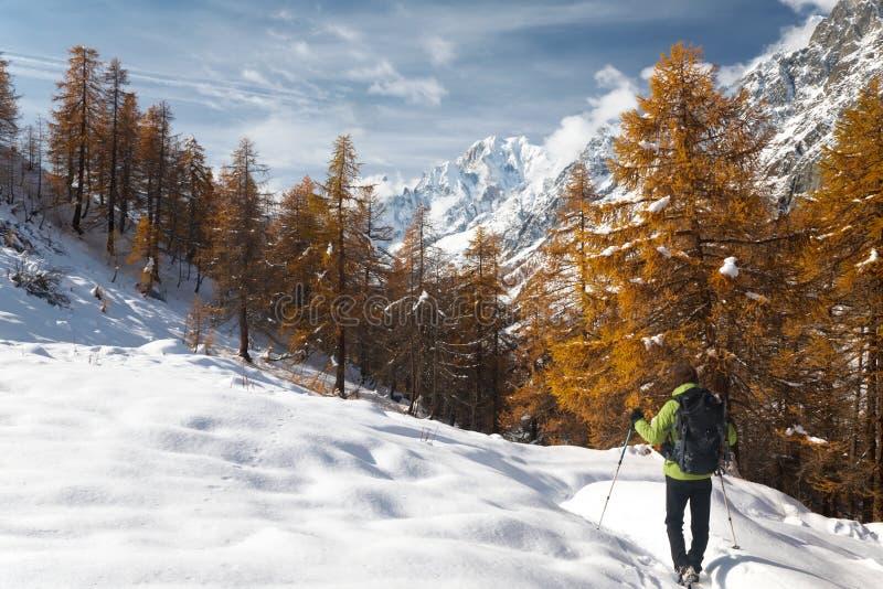El ir de excursión del invierno fotografía de archivo