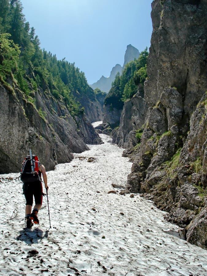 El ir para arriba el valle alpino fotografía de archivo