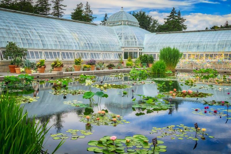 El jardín botánico de Nueva York fotografía de archivo