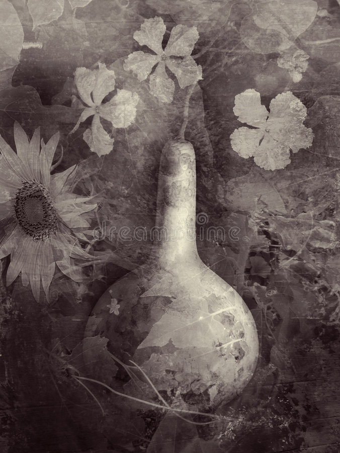 El jardín de la calabaza stock de ilustración