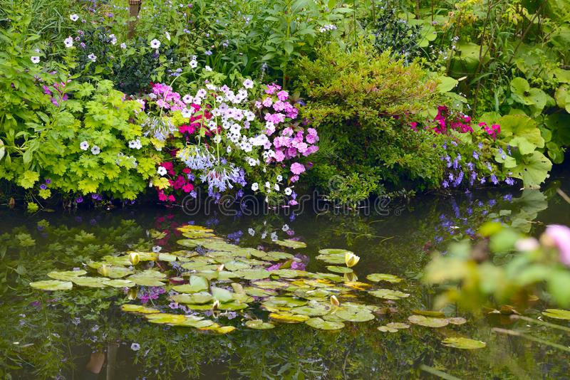 El jardín hermoso de Giverny, lirios del ` s de Claude Monet acumula fotografía de archivo libre de regalías
