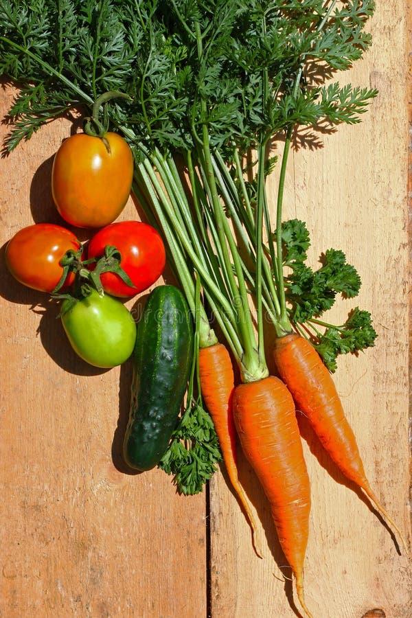 El jardín orgánico fresco cultivó verduras en un tablero de madera imagen de archivo libre de regalías