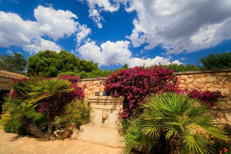 El jardín privado imagen de archivo libre de regalías