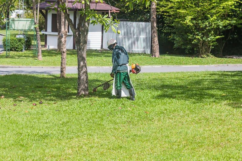 El jardinero está cortando la hierba fotografía de archivo