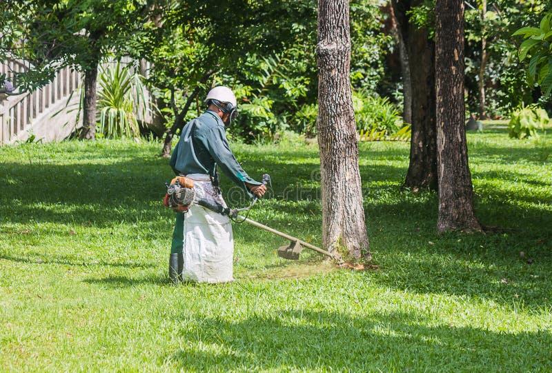 El jardinero está cortando la hierba fotografía de archivo libre de regalías