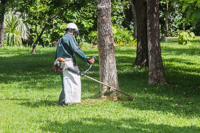El jardinero está cortando la hierba imágenes de archivo libres de regalías