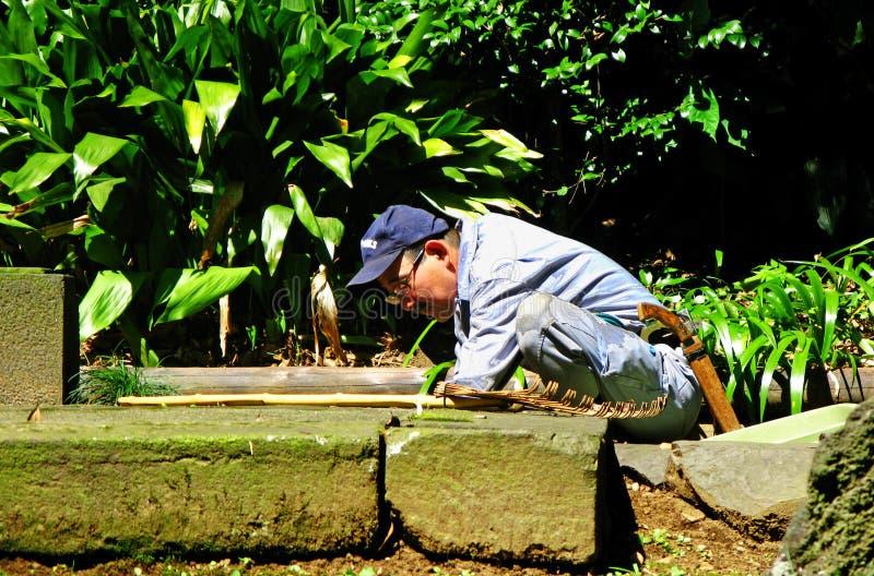 El jardinero japonés despeja malas hierbas en la tierra imagenes de archivo