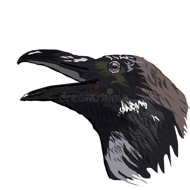 El jefe de los gráficos de un vector del cuervo la imagen aislada ilustración del vector