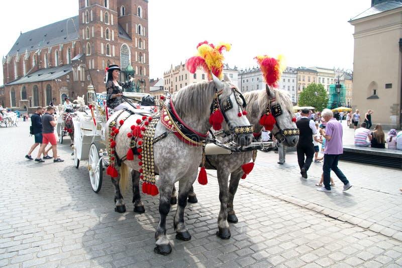 El jinete de la muchacha invita al paseo del carro del caballo en Kraków, Polonia imagenes de archivo