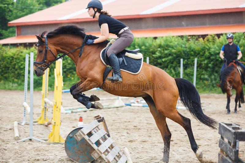 El jinete del caballo está entrenando en la arena foto de archivo libre de regalías