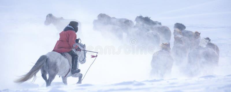 El jinete en la nieve imagen de archivo