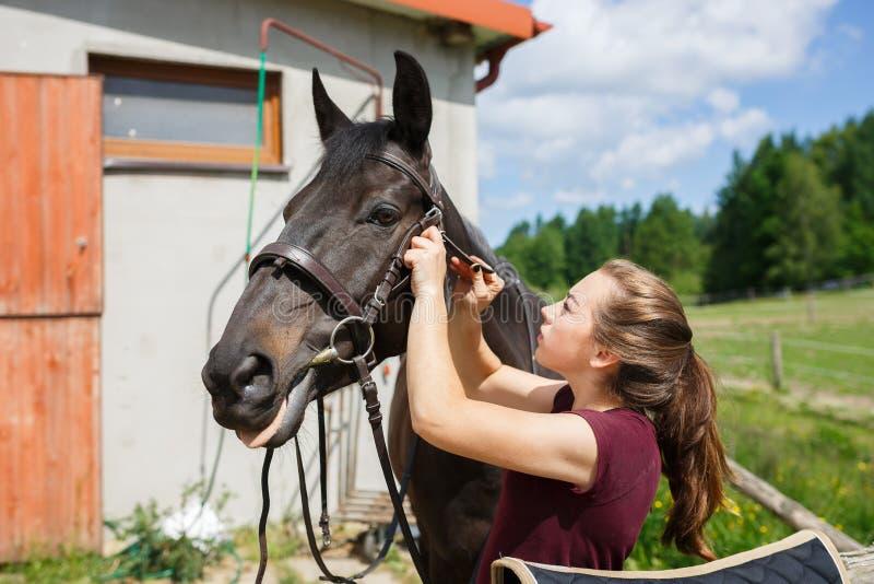 El jinete ensilla un caballo fotos de archivo libres de regalías