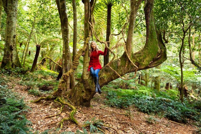 El jugar en el jardín de la naturaleza - mujer que se sienta en árbol grande con las vides de la ejecución imagenes de archivo