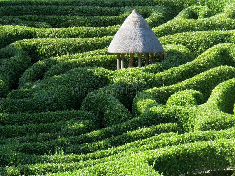 El laberinto topiario en el Jardín Glendurgan, Cornwall imágenes de archivo libres de regalías