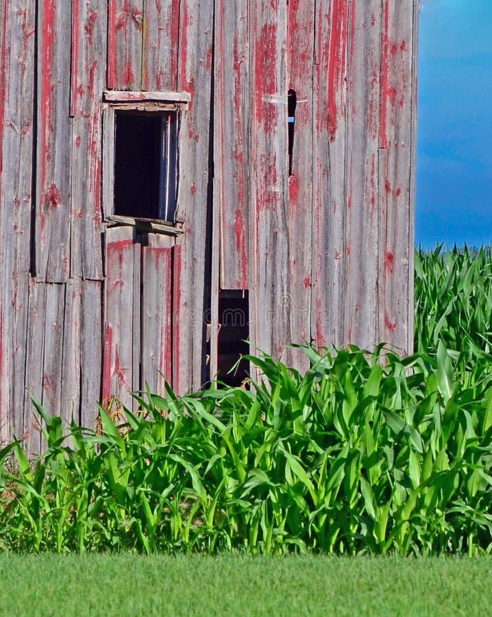 El lado de un granero resistido imagen de archivo