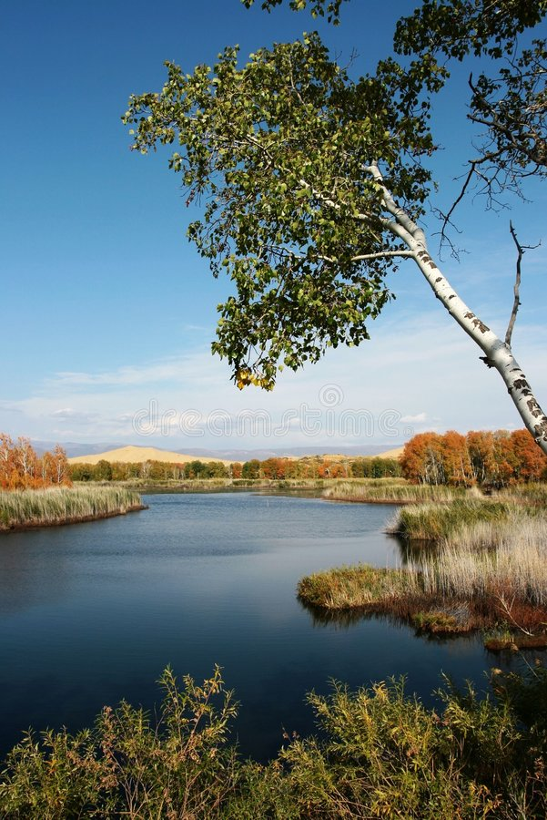 El lago blanco de la arena fotografía de archivo libre de regalías