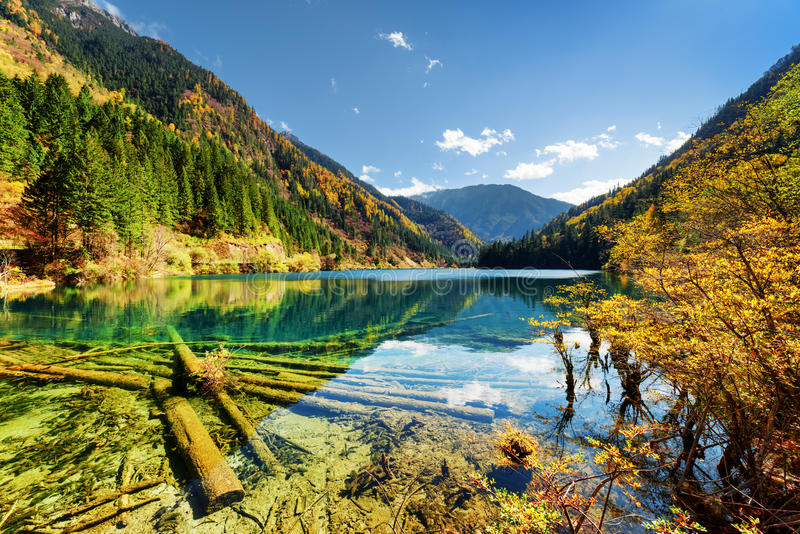 El lago de bambú arrow con agua cristalina entre las montañas foto de archivo
