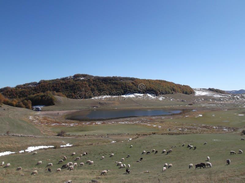 El lago del ensko del ‡ del ¡Ä de PoÅ fotos de archivo libres de regalías