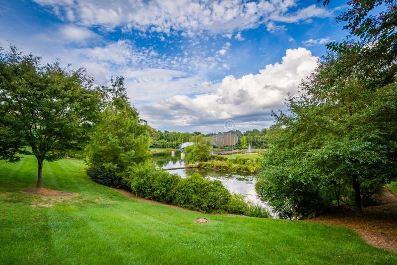 El lago en el parque de la sinfonía, en Charlotte, Carolina del Norte fotografía de archivo