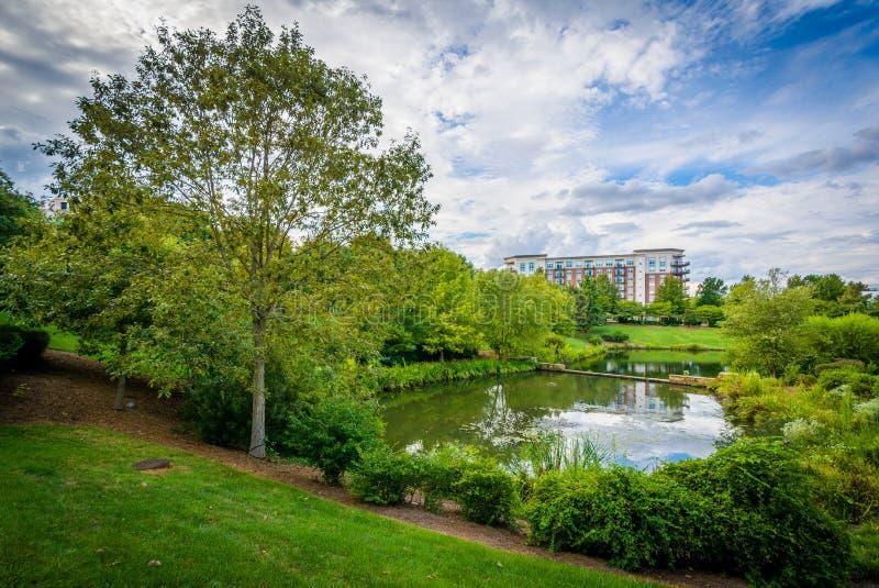 El lago en el parque de la sinfonía, en Charlotte, Carolina del Norte fotos de archivo