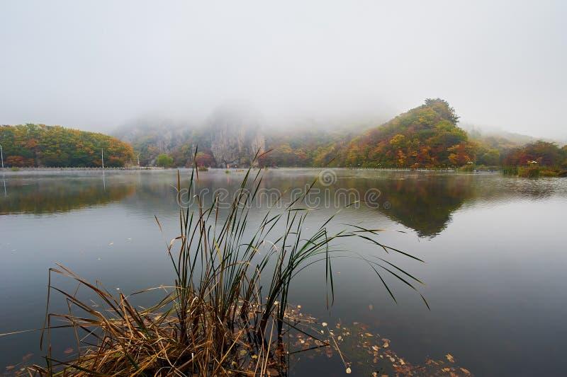 El lago en la niebla escénica foto de archivo libre de regalías