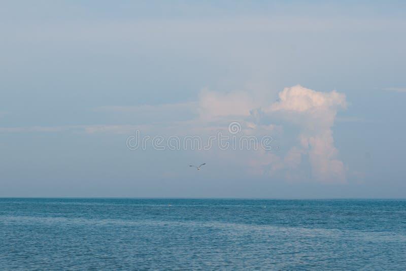 El lago Erie en el verano imagen de archivo libre de regalías